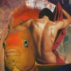 Collagebild Fisch von Hagen Ludwig (Nottekunst)