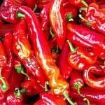 hot-chillie-k http://quarknet.de/food-fotos.php