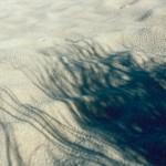 Grasschatten im Sand ein Foto von Andreas Schrock